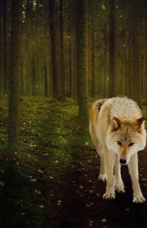 meruselfs-golden-blue-eyed-wolf-chapter-4.jpg