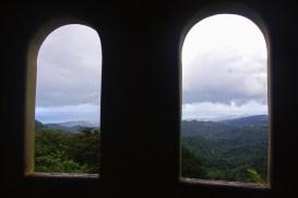 windows-to-rainforest