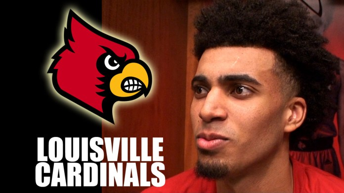 louisville cardinals basketball