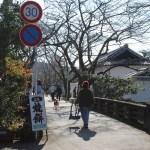 這條街是『杉之馬場』,賞櫻花的地點。