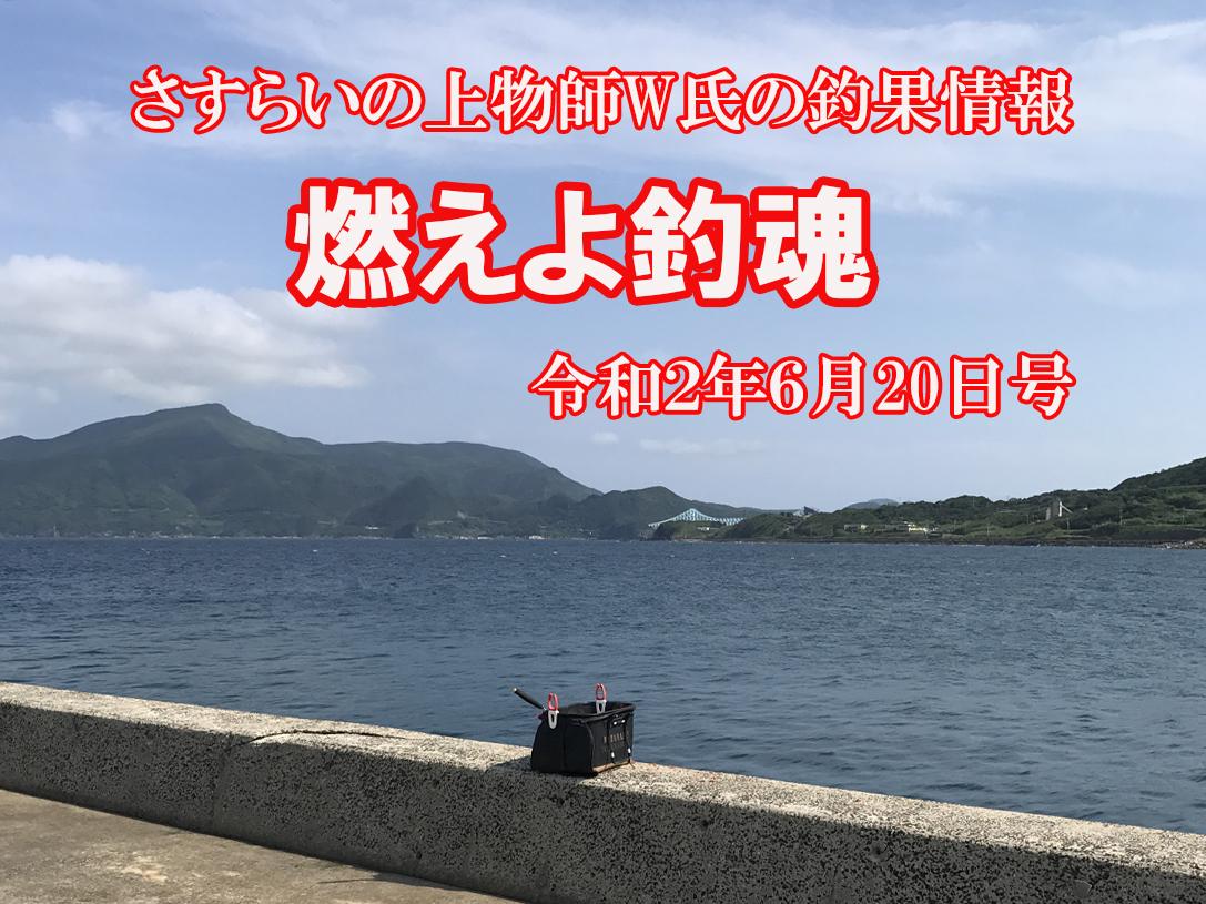 長崎県平戸市生月町、壱部漁港でふかせ釣り。釣友W氏の釣果。