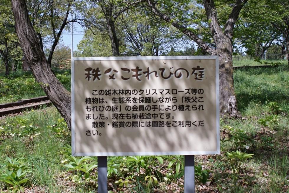 羊山公園 秩父こもれびの庭
