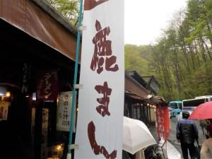 軽井沢 白糸の滝 鹿まん