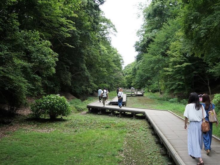 亀岩の洞窟(濃溝の滝)遊歩道