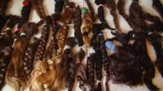 Donated_hair_ponytails.jpg