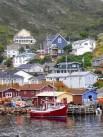 Petty Harbour_CMYK.jpg