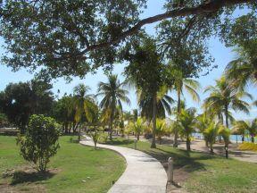 Les jardins du Royal Decameron Indigo.JPG
