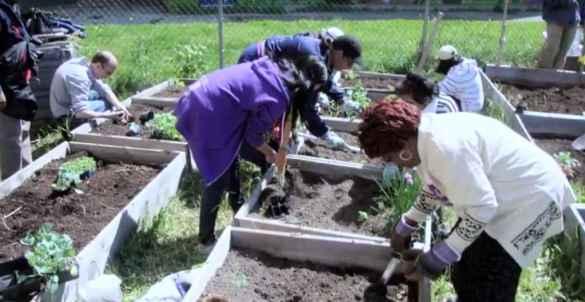 Le jardinage est une activité populaire à Black Creek.