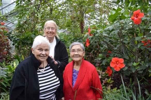 Visite de Allan Gardens par des membres de CAH, qui organise de telles sorties et activités pour que nos aînés restent actifs.