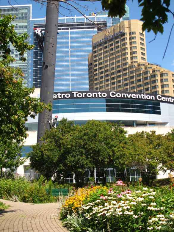 Le Palais des congrès de Toronto (côté Sud).