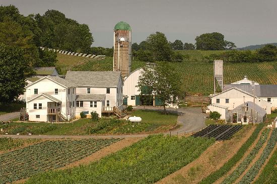 Une ferme amish comprend toujours deux maisons, l'un pour la famille, l'autre pour les grands-parents.