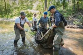 Des nettoyeurs bénévoles de Stewards of Cootes Watershed.