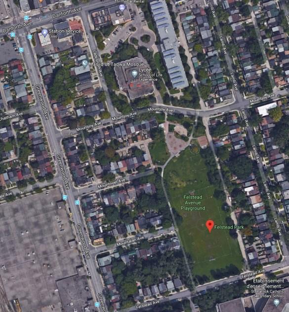 Vue aérienne Google de l'école Greenwood (School of Life Experience du TDSB) et du parc Felstead, au Sud-Est de Dandorth et Greenwood.
