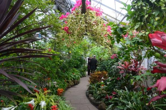 Allan Gardens Un Jardin D Hiver Dans La Ville Aux Choux