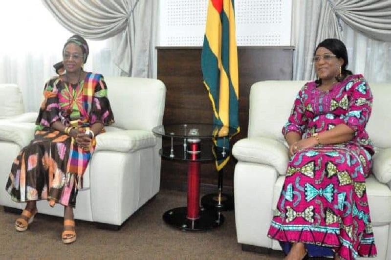Assemblée nationale, Togo, Mme Tségan Djigbodi, Mme Fatoumata Binta Tidiane Diallo, OMS