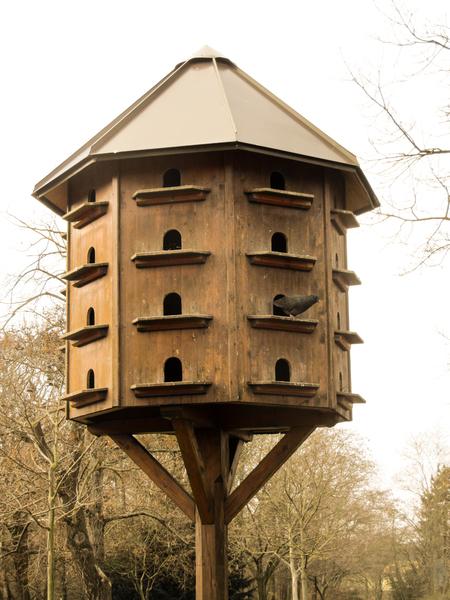 Dove Bird House Dimensions