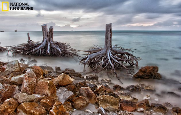 National Geographic Your Shot