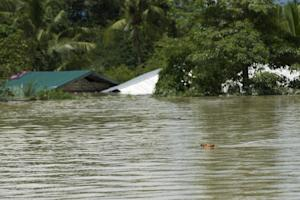 A dog swims in floodwaters in Kalay, upper Myanmar's…