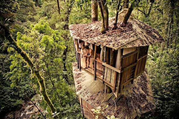 Finca Bellavista is an epic undertaking that's become a thriving treehouse village.