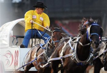 Rodeo Stop Animal Abuse