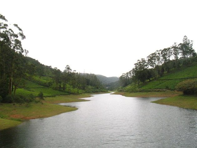 A lake surrounded by tea gardens in Meghamalai. Click for more