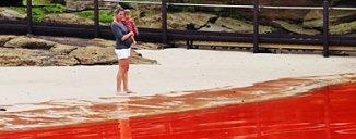Una mujer, con un niño en brazos, observa la marea roja que afecta a las playas de Australia / Foto: Newspix/Rex/Rex USA