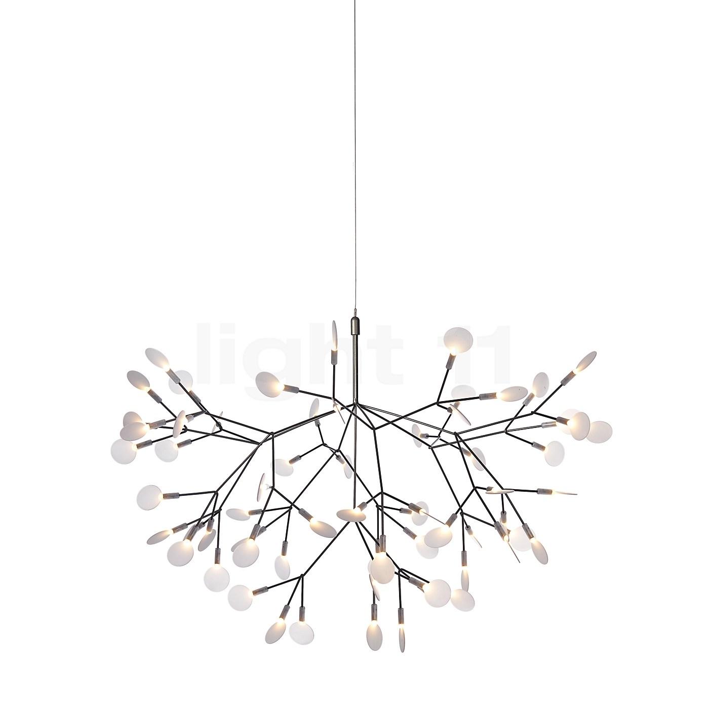 Moooi Heracleum Ii Pendant Light Small Pendant Lights Buy