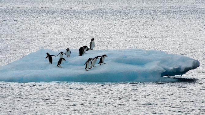 Growing sea ice surrounding Antarctica could prompt scientists to consider relocating research stations on the continent, according to the operations manager of the Australian Antarctic Division