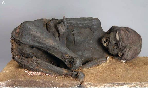 Mummy Murder Mystery Solved: Incan Woman's Head Smashed