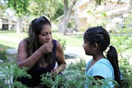 This photo taken Saturday June 1, 2013, in Fresno, Calif., shows farmworker Cristina Melendez smelling a mint plant with her 3-year-old daughter Claudia Yanely in her mother's garden. Melendez and her seven U.S. citizen children have for years struggled with poverty as she worked in the fields, following in her mother's footsteps, while Fresno's farmers prospered. (AP Photo/Gosia Wozniacka)