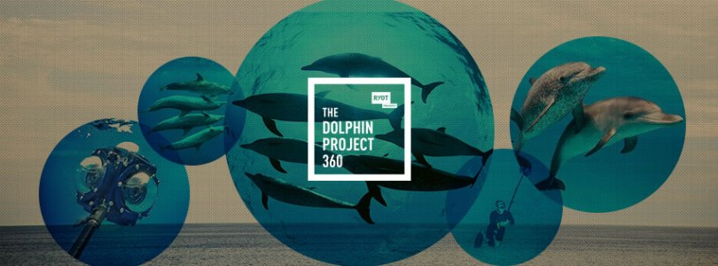 dolphin-project-vr4