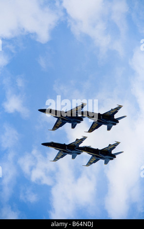 The U.S. Navy Blue Angels flight demonstration squadron ...