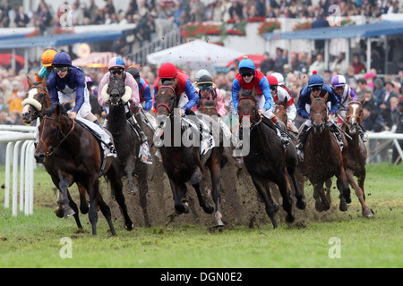 Hamburg Germany horse and jockey during a gallop race in
