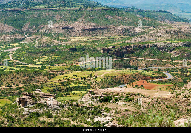 Image result for Green tigray