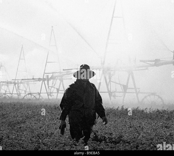 Black And White Burning Crops