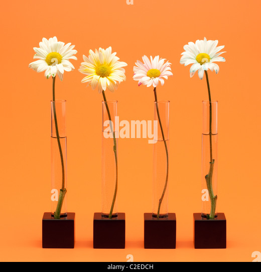 Ron Flowers Stock Photos Amp Ron Flowers Stock Images Alamy
