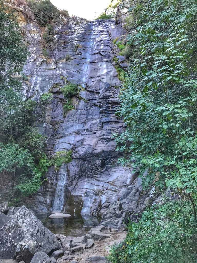 cascade carnevale