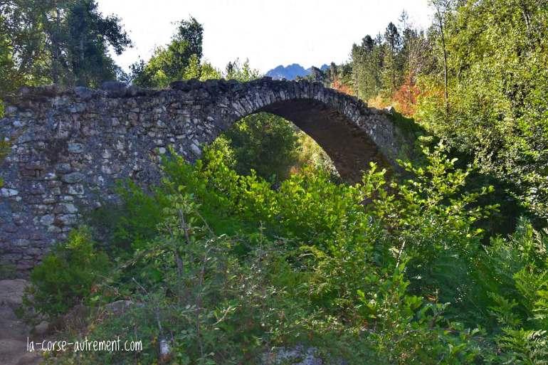 Le pont de Zipitoli