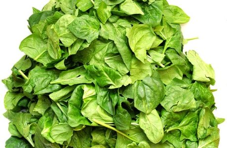 Spinach Vegetables Green Nutrition
