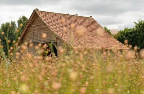 Roofing House Fields Fleuri  - cyremille / Pixabay