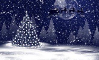 Prix, écologie, déco, ambiance : choisir entre un sapin de Noël naturel ou artificiel
