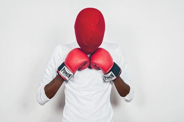 Masked Boxer Boxing Gloves Man - Starkvisuals / Pixabay