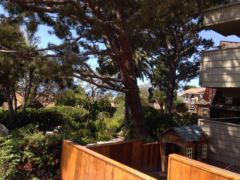 Exploring Laguna Beach with ClueHoo