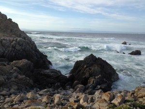 Taking the 17 Mile Drive