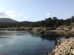 Exploring Point Lobos State Natural Reserve