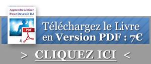 Version PDF