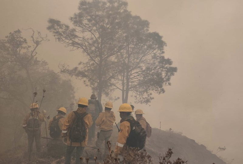 incendio forestal incendios forestales