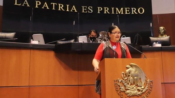 Presidenta Cámara de Diputados