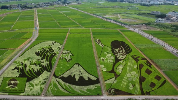 obras de arte con arroz conmemoran los juegos olímpicos
