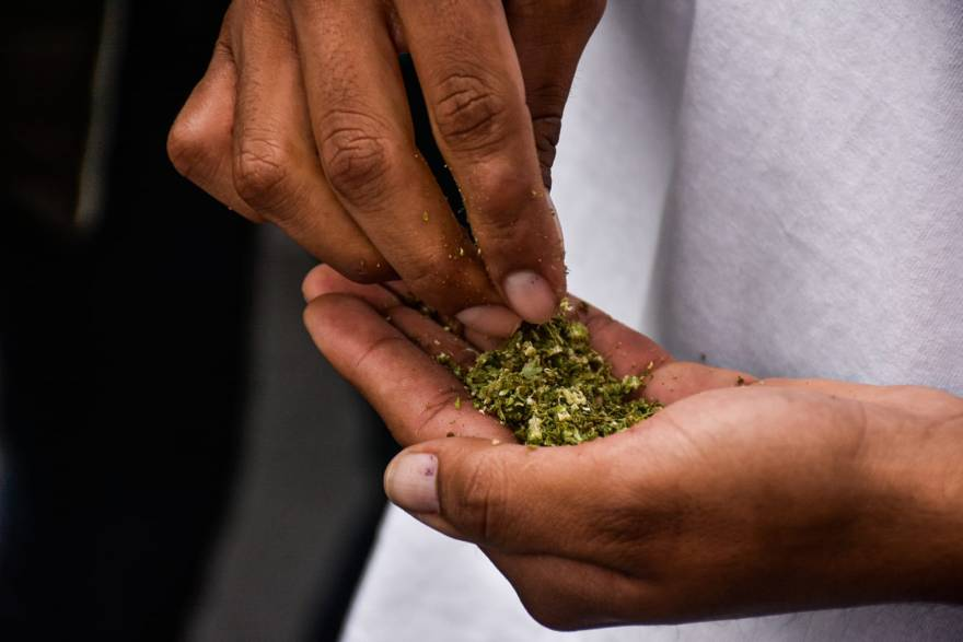 """Fumatón"" de marihuana en la CDMX"